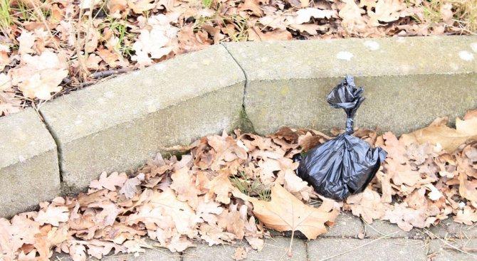 Плогинг - да събираш боклук доброволно и тичешком