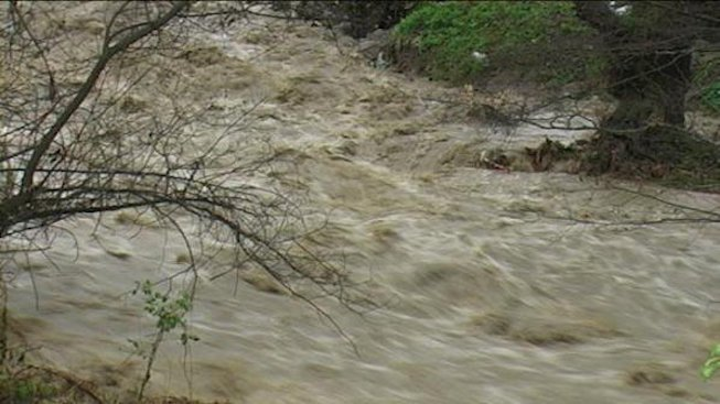 Спасиха брат и сестра от бурните води на река Арда