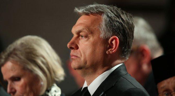 Партията на Орбан претърпя изненадващо изборно поражение