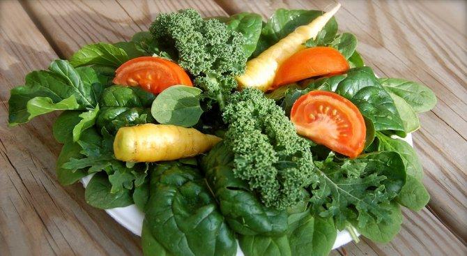 Зелените листни зеленчуци предпазват от диабет