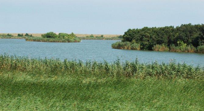 Инспектори извадиха от Дуранкулашкото езеро 400 метра мрежи за незаконен улов