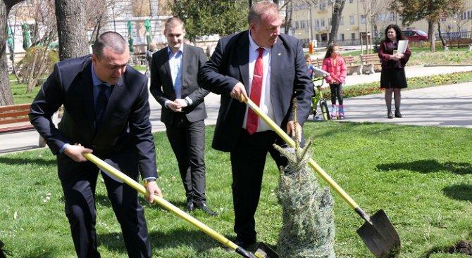 България сред отличниците по съхранени гори в Европа
