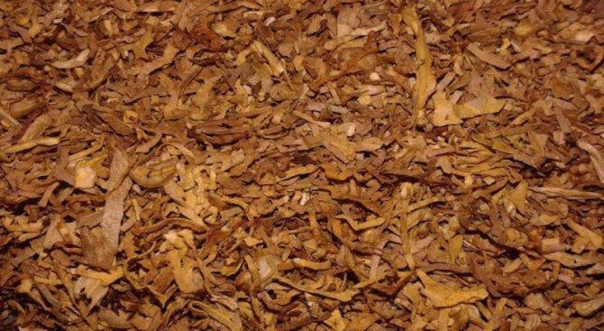 Полицията откри контрабанден тютюн в дома на 34-годишна жена