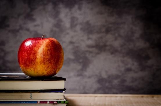 Нови правила за финансиране на българските неделни училища в чужбина
