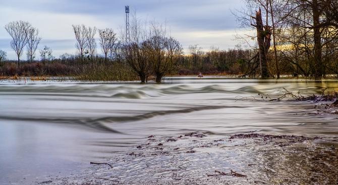 Деца почистиха и зарибиха река Бели Вит
