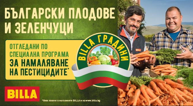 BILLA градини - когато вкусните и здравословни плодове и зеленчуци диктуват правилата