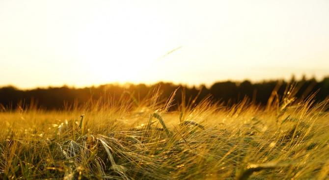 България получава 7,7 млрд. евро за земеделие през следващия програмен период