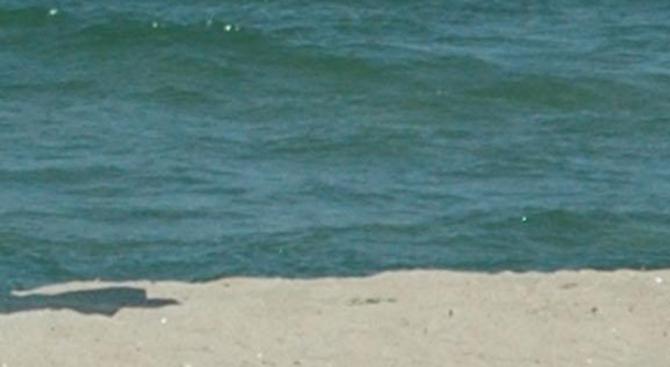 Паника в Китен: Нафта изтече в морето заради инцидент с моторна лодка