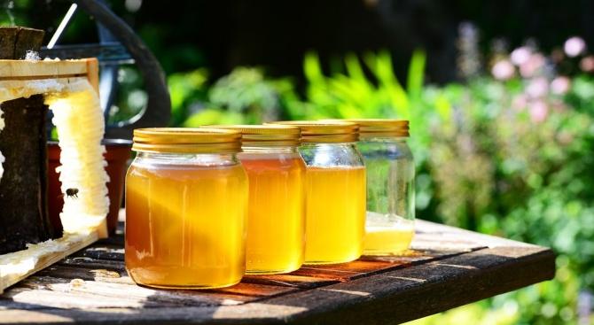 Цената на меда в Русенско ще скочи с 30%, прогнозират пчелари