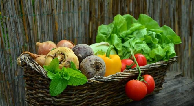 По какво се познава има ли пестициди в плодовете и зеленчуците