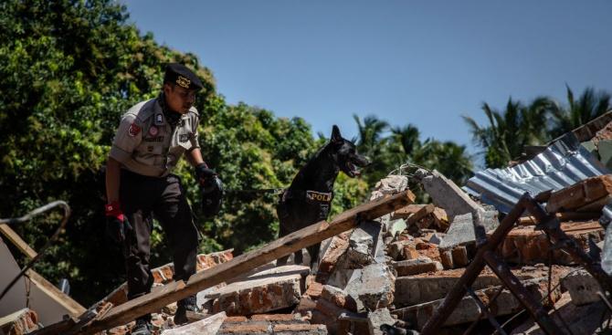 Земетресенията и цунамито взеха 30 жертви в Индонезия