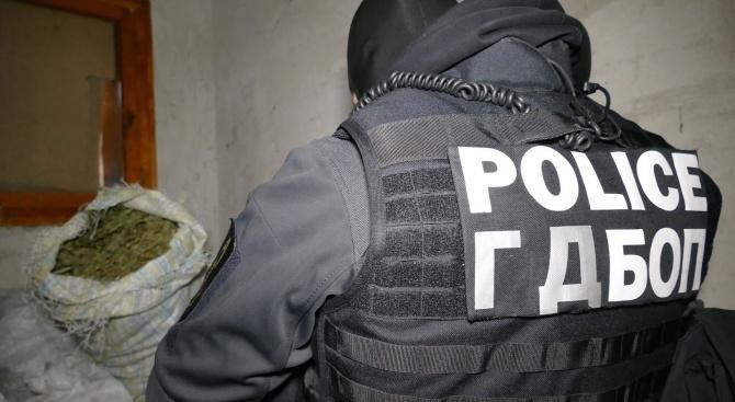 Спецакция в Пазарджик: Закопчаха четирима с наркотици