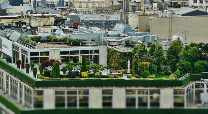 Избраха най-красивите дворове и балкони в Разград