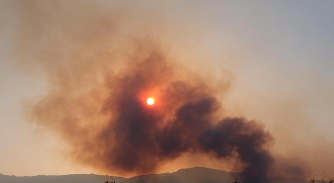 Пожар в Люлин планина (обновена)