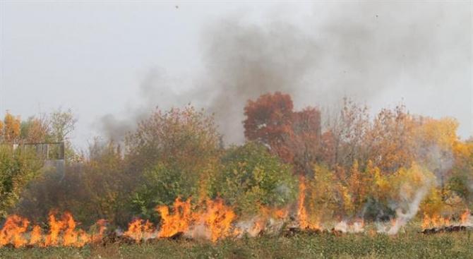 За последните 11 дни в страната са погасени 1721 пожара