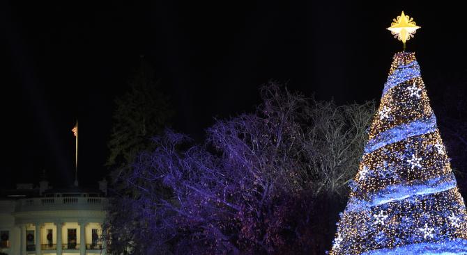 Мъж се покатери на елха край Белия дом