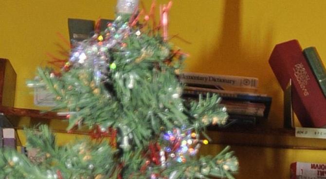 Коледната украса намалява кавгите