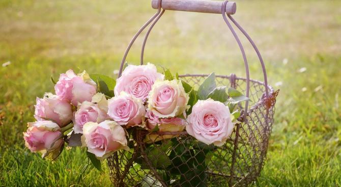 Ароматът на рози в колата предпазва от катастрофи