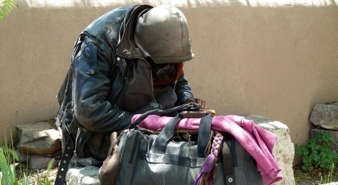 Приютът за бездомни в Русе е препълнен и има нужда от хранителни продукти