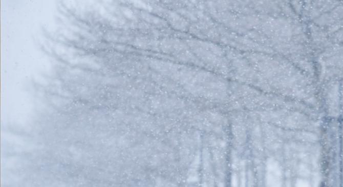8-годишно дете загина при снежна буря в Ливан