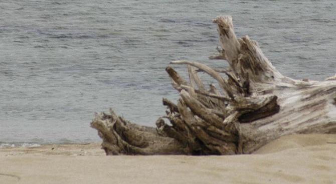 """Министерството на туризма проверява спешно плажа при къмпинг """"Смокиня"""" (снимки)"""