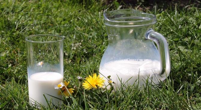 Млякото е полезно за сърцето