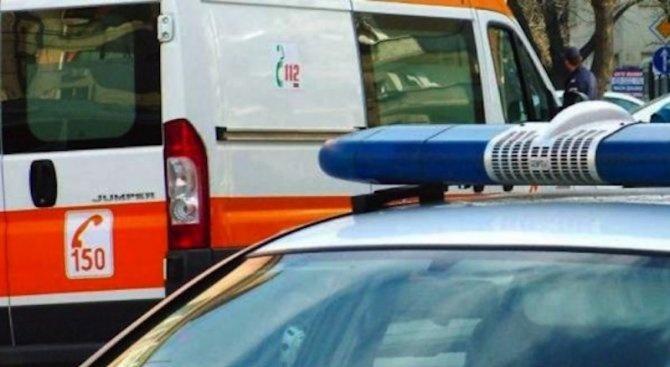 Шофьор се заби в крайпътно дърво, спътникът му е с опасност за живота