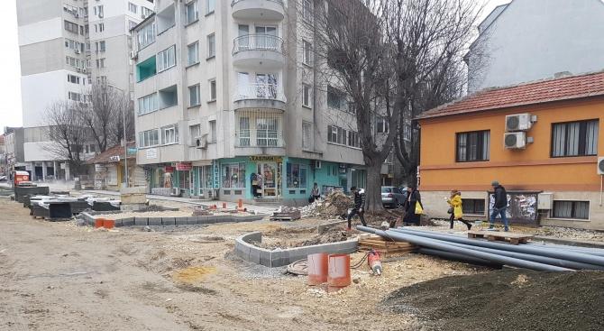 Бетонираха дърво на варненска улица (снимка)