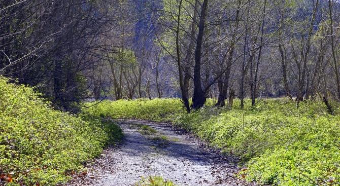 Почистени и маркирани са 45 км планински пътеки в Трънско