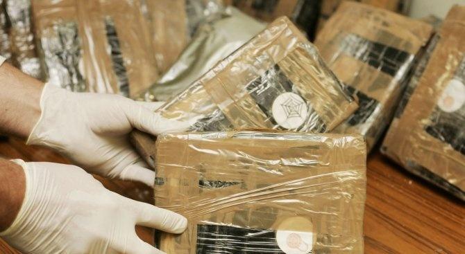 Албанци вкараха огромна пратка с кокаин в банани в Германия