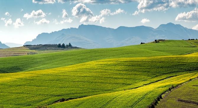ЕК увеличава националните помощи за земеделските стопани до 25 000 EUR