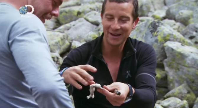 Разпитват българи за изядената от Беър Грилс жаба