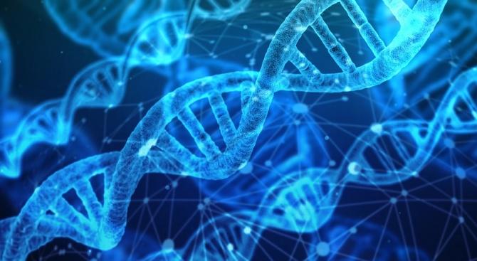 Китай изготви правила за биотехнологиите след скандала с генно редактираните бебета