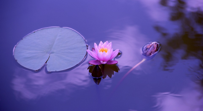 Денят носи хармонична енергия, уравновесява силите на доброто и злото