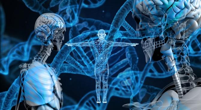 Изследванията с редактирани гени трябва да продължат предпазливо