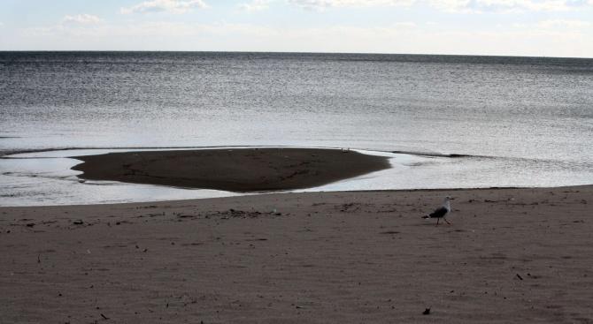 Наводнение в правителствена резиденция край Шабла е причина за източването на две езера