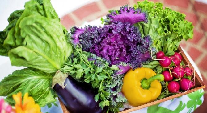 На последно място сме по консумация на плодове и зеленчуци в ЕС