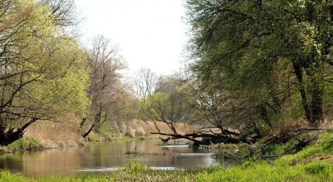 Финансират почистването на река Батова
