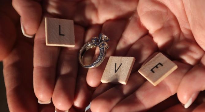 Британец използва крава за предложение за брак