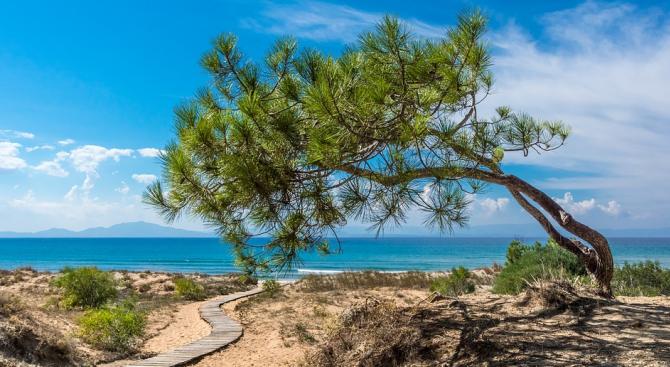 Mакедонските туристи оставили 155 милиона евро в Гърция през 2018-а