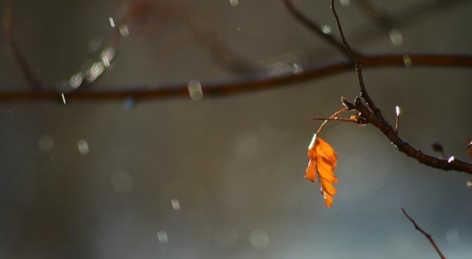 Слънце и дъжд през днешния ден