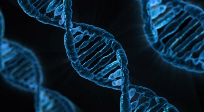 Обвиняват китайския учен, клонирал близначета, че е използвал неподходящ ген