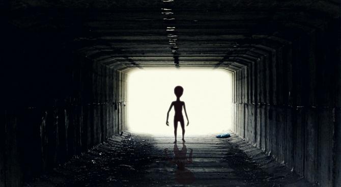 Специалисти твърдят, че извънземните организми приличат на макарони