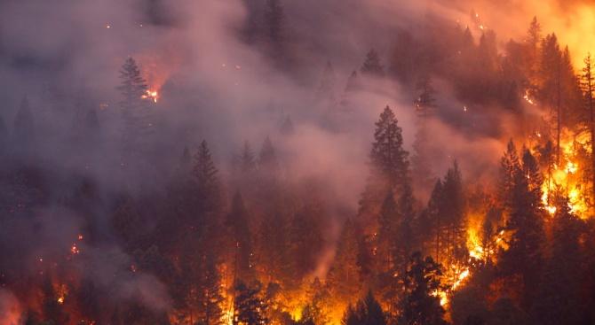 Голям горски пожар бушува в Южна Гърция