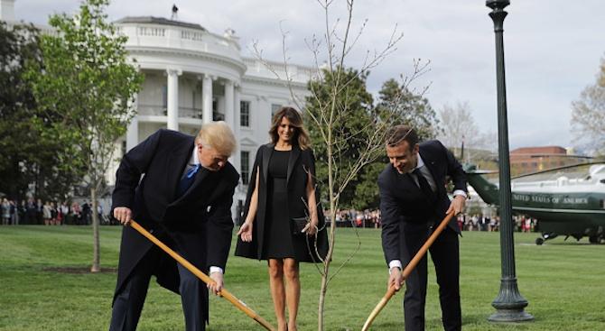 Изсъхна дървото на приятелството между Тръмп и Макрон