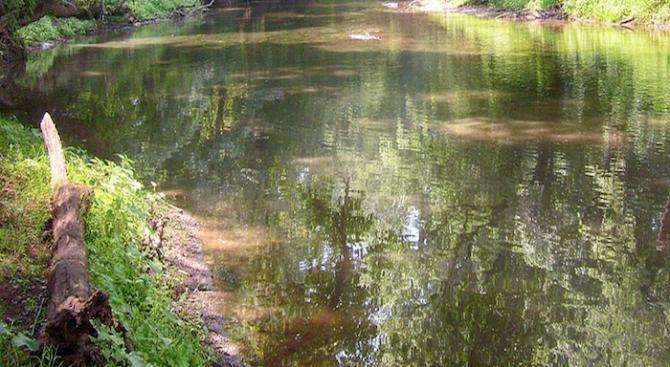 Гъста бяла пяна покри река Струма в Перник