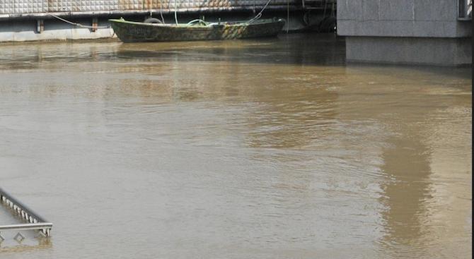 Нивото на река Дунав се е понижило край Видин