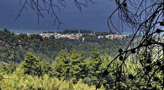 МВнР:  Няма пострадали българи при пожара на Халкидики