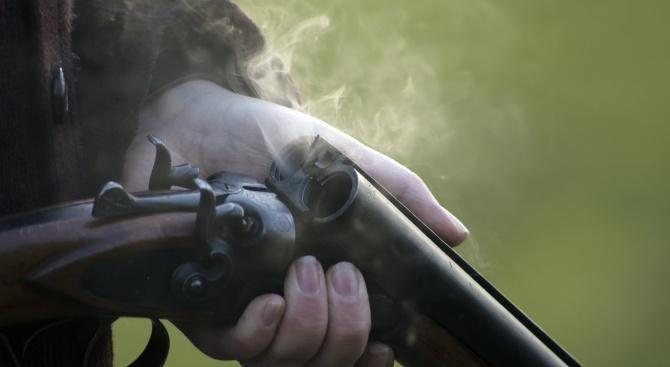 Простреляха бездомно куче с ловна пушка в Тутракан