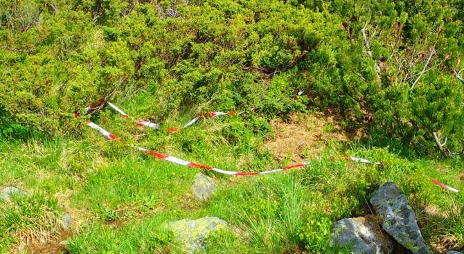 Боя и ленти след планинско бягане замърсиха Рила